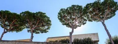 SPAMLAB3/ La cittadella giudiziaria con Peluffo: tempo, trasformazione e architettura