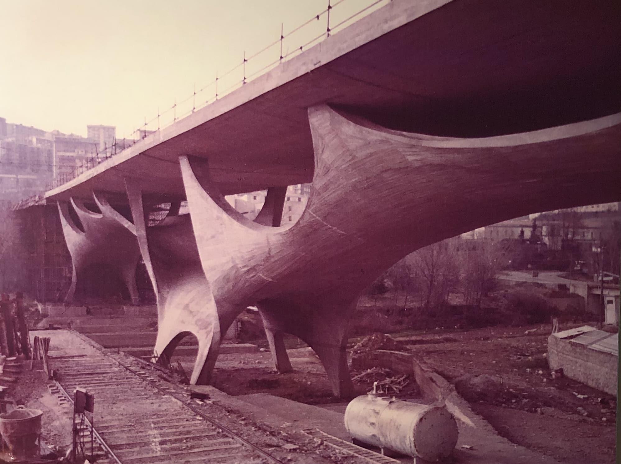 Ponte Musmeci - IMG_7349