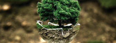 Ambiente, definito il piano nazionale per l'energia ed il clima