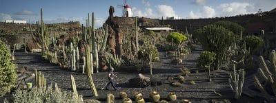 Documentario su Lanzarote, Jardín de Cactus
