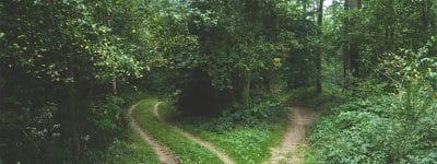 Nasce il Sentiero dei Parchi
