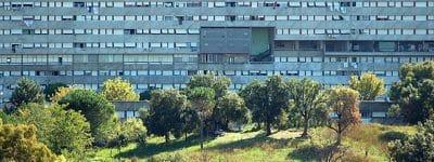 Roma, edilizia residenziale Ater: oltre 25 milioni per riqualificare gli spazi verdi degli edifici