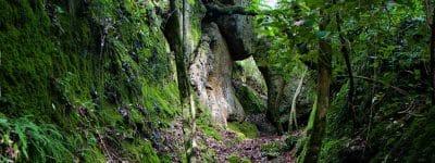 Nasce il monumento naturale Valle Sant'Angelo