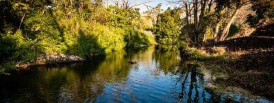 Approvato il piano di assetto della Riserva Naturale della Marcigliana
