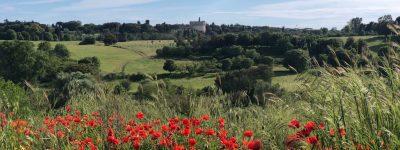 Appia Antica, presentati progetti del piano regionale di valorizzazione luoghi della cultura