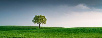 Transizione Ecologica, Parchi: fondi per 40 milioni per le Zone economiche ambientali
